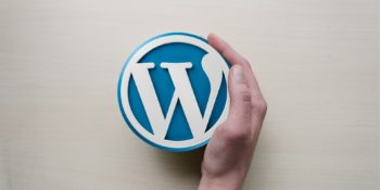 WordPress 101: Why This Is The Best CMS For You